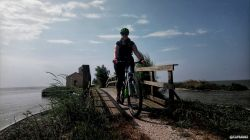 25 Maggio - Comacchio e i sui fenicotteri